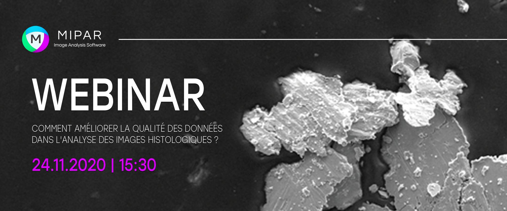 Webinar MIPAR – Comment améliorer la qualité des données dans l'analyse d'images histologiques